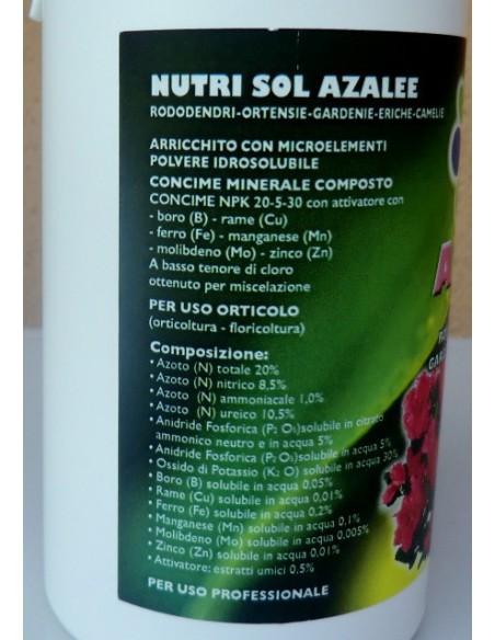 Nutri sol azalee concime humato in polvere per acidofile for Concime per ortensie